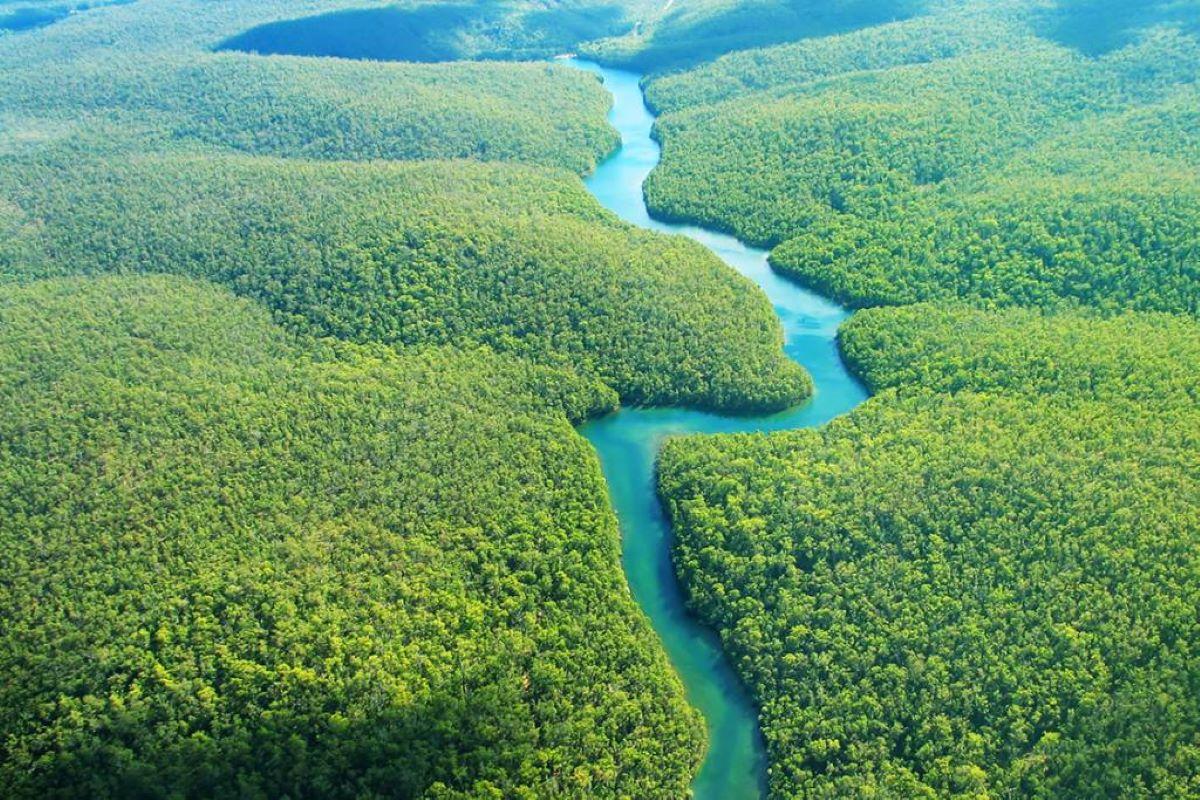 Amazonas: confira cinco pontos turísticos para visitar na região