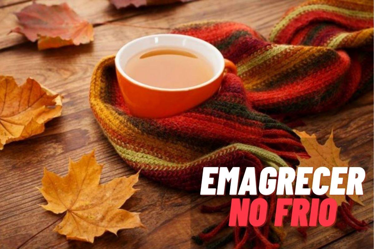 Frio pode ajudar a emagrecer rápido e com saúde? Saiba mais!