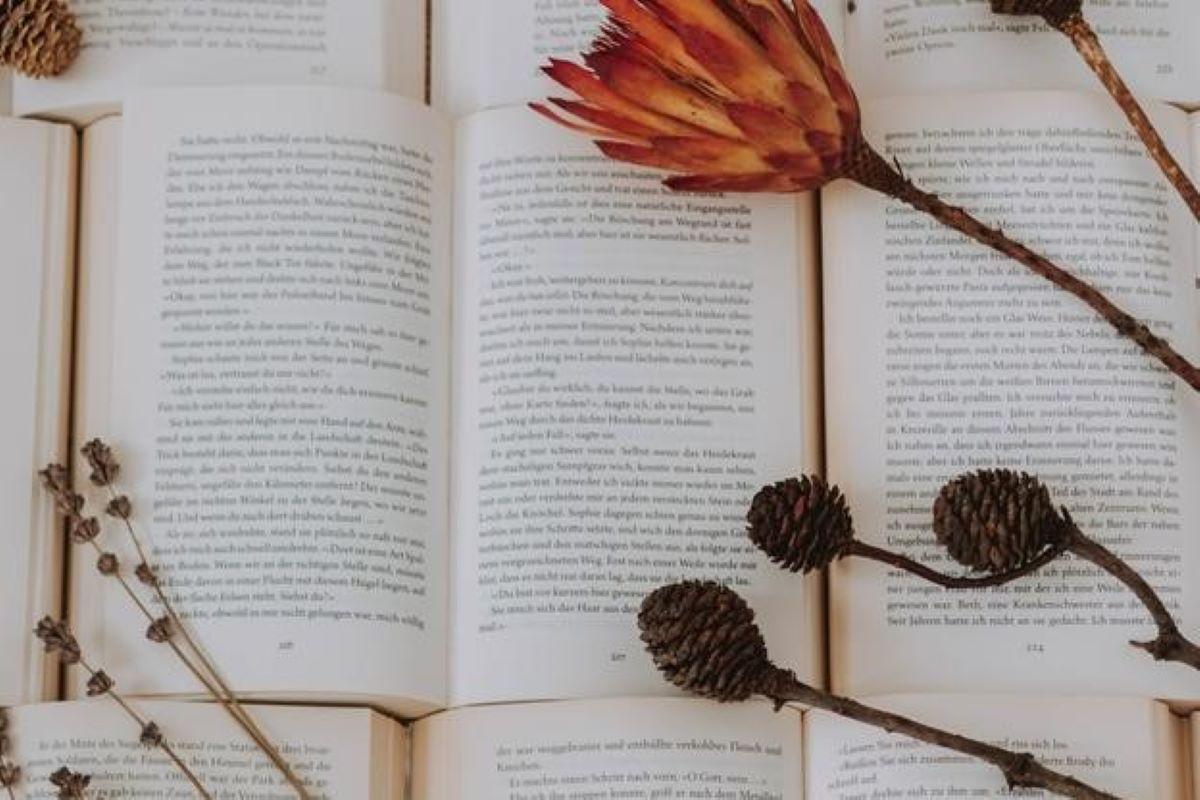 5 livros com personagens femininas extremamente inteligentes