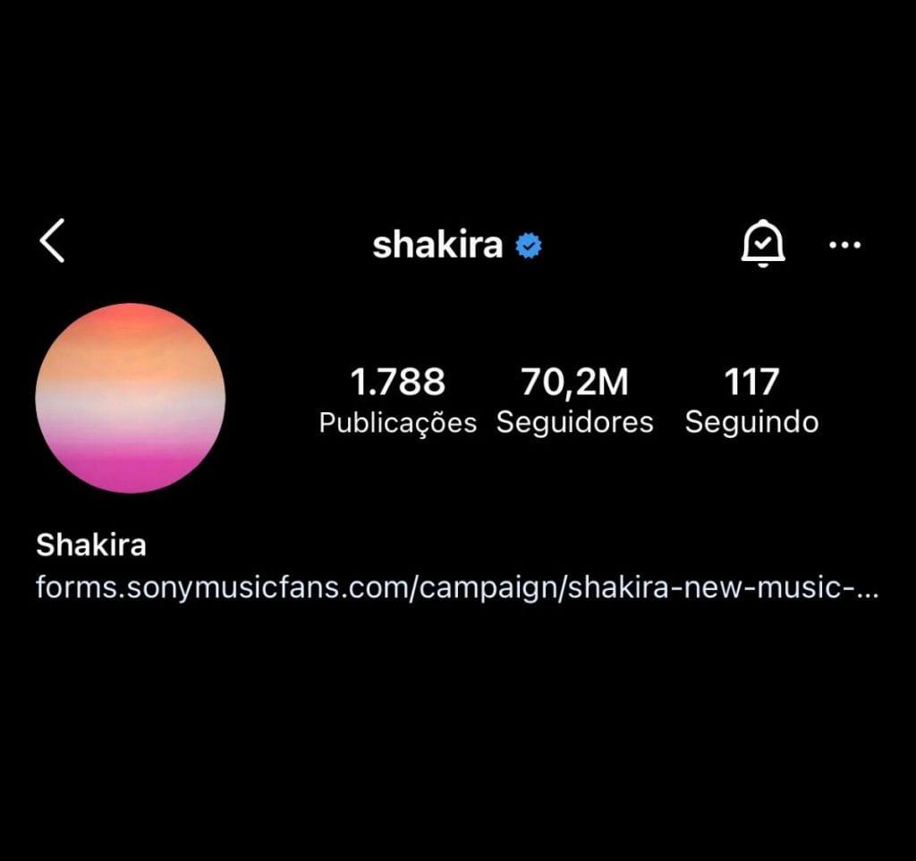 shakira perfil