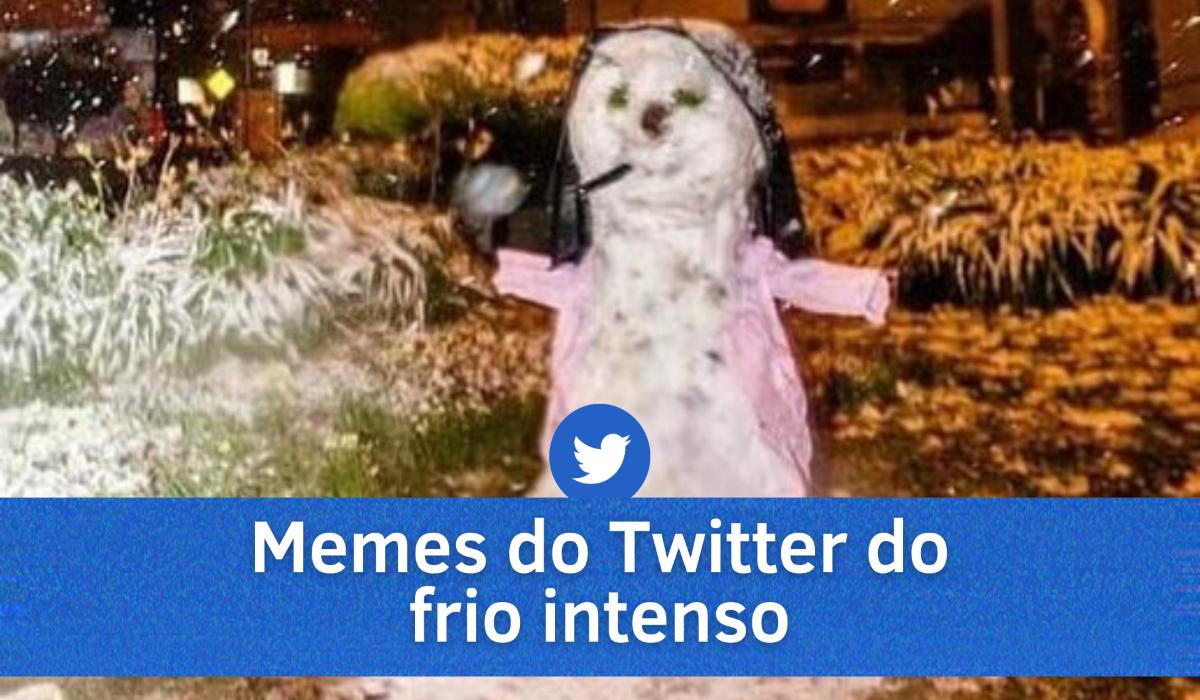 Melhores memes do Twitter dos dias de frio intenso no Brasil. Confira