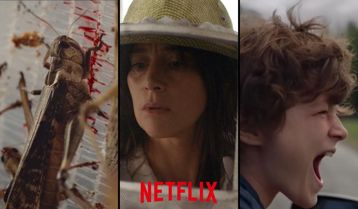 'A Nuvem': tudo sobre o novo terror francês da Netflix