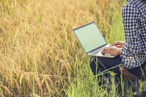 dificuldade de conexão à internet em áreas rurais df