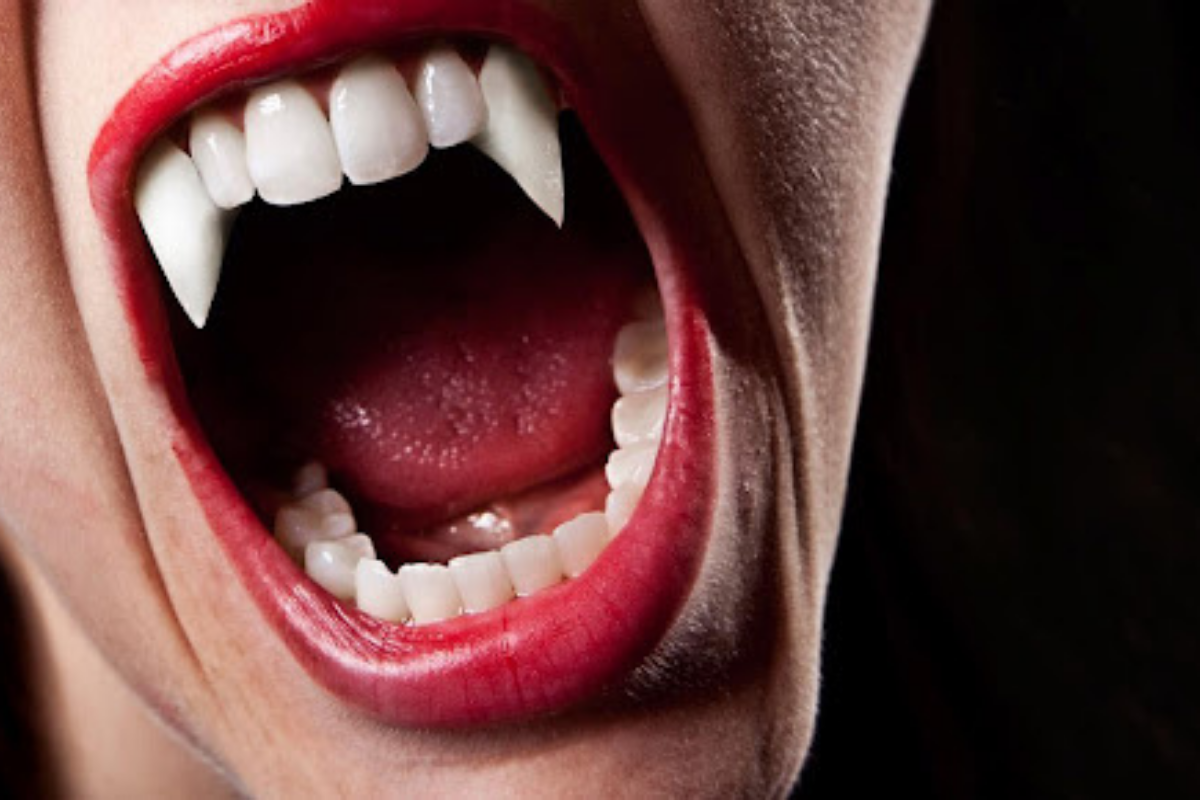 5 filmes que fizeram sucesso ao longo dos anos sobre vampiros