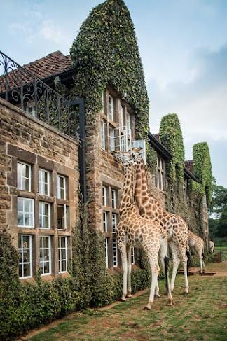Quênia, localizado na África Oriental.