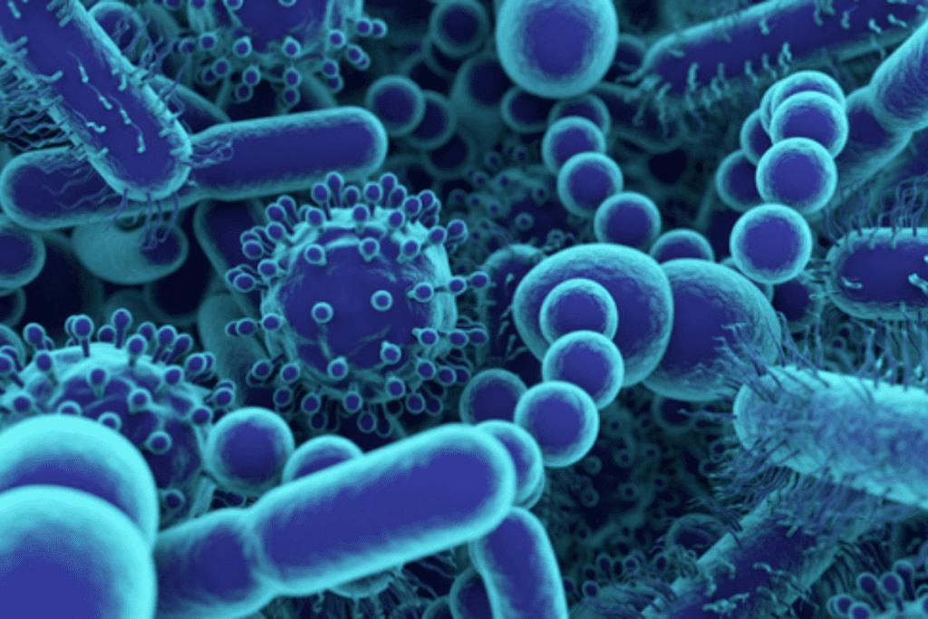 Além do novo coronavírus, conheça outras doenças letais na história da humanidade.