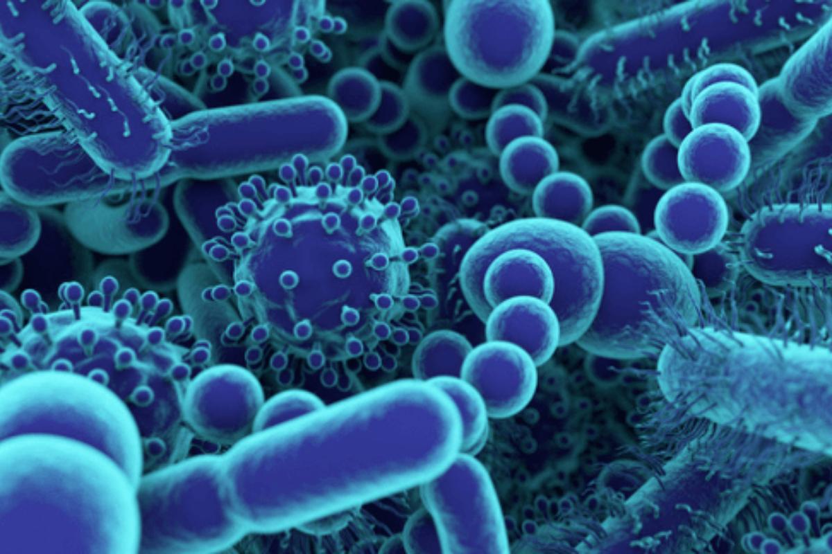 Conheça as 10 doenças mais letais de todo o mundo