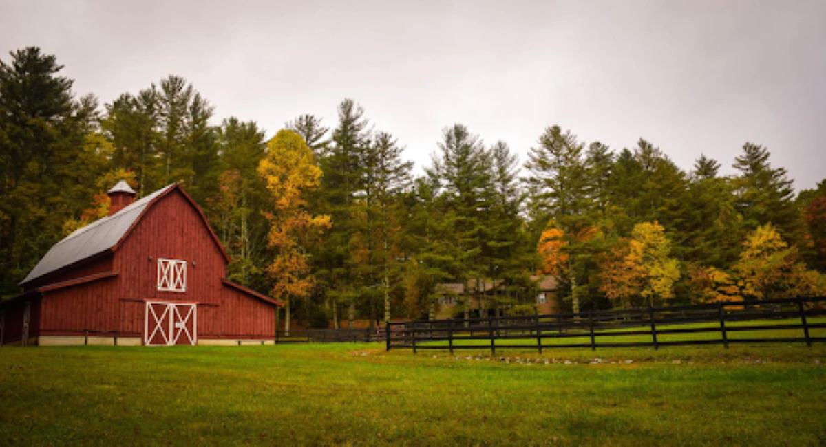O que você precisa saber antes de se mudar para o campo ou interior