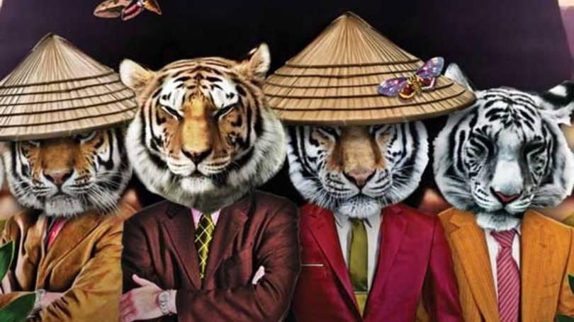 Tigres Asiáticos: Saiba o que são e o porquê dessa denominação