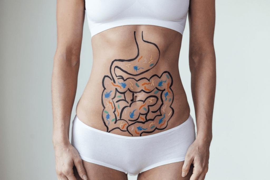 Conheça os principais sinais de que a saúde de seu intestino pode estar prejudicada.